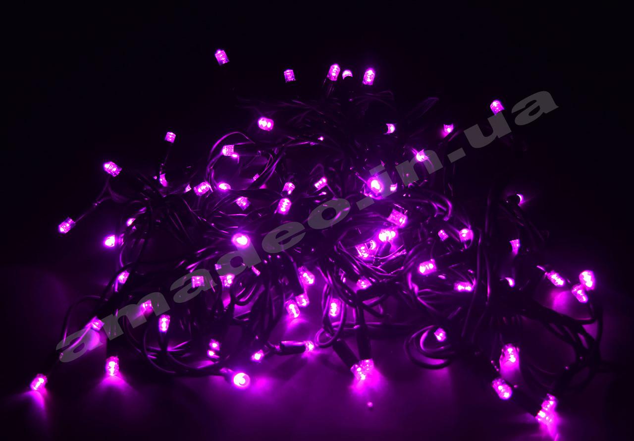 Уличная Гирлянда светодиодная нить, 10 м черный каучуковый провод - цвет розовый, фото 1