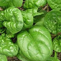 Матадор семена шпината Semenaoptom 25 г