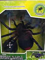 Игрушка для мальчика Паук Черная вдова на р/у подсветка ZYB-B0046