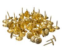 Гвозди декоративные обивочные Хром, 100 шт., фото 1