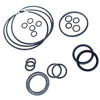 Комплект колец уплотнителя гидромотора 86999889, CX8080   9807617CNH
