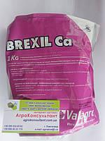 Микроудобрение Brexil Са (Брексил Кальция) 1 кг, Италия, фото 1