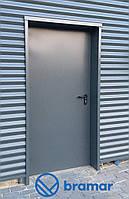 Противопожарные двери Hormann MZ 900х2050 мм