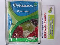 Фунгицид Фундазол 10 г. — профилактика грибковых болезней растений, защита роз,