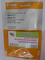 Семена огурца Аякс F1 (Nunhems) 1 000 семян пчелоопыляемый, ультра-ранний гибрид (42-44 дня)