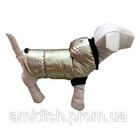 Зимний жилет G-19 для собак DogsBomba (модель унисекс)