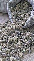 Семена свеклы 20г на микрозелень