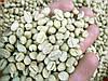 Кофе зеленый в зернах Кения Пиберри (ОРИГИНАЛ), арабика Gardman (Гардман)