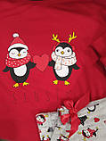 Женская пижама с пингвинами Pizama Penguins Sensis, фото 3