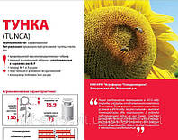 Семена подсолнечника Тунка 2016г. , устойчивый к A-G расам заразихи