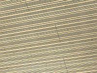 SWISS CLIC PANEL CREATIVE – SPRUCE D 396 OW