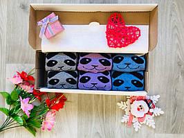 Подарочный набор женских зимних махровых носочков панда размер 35-41 ассорти 6 пар