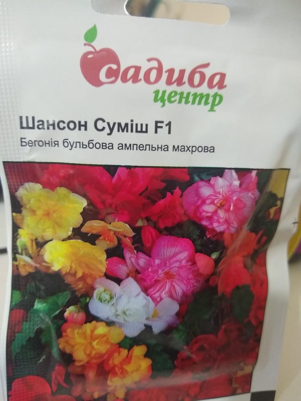 Бегония махровая ампельная Шансон смесь F1, Чехия, 10 семян