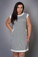 Платье женское модель №479-1, размеры 46-48,48-50 гусин. лапка