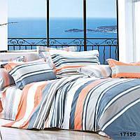 Комплект постельного белья Ранфорс 17156 - Двуспальный Евро