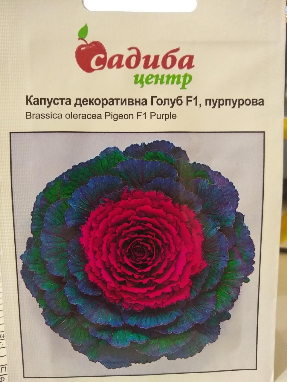 "Капуста декоративная Голуб F1 пурпурная Brassica oleracea 10 семян, ""Satimex"", Германия"