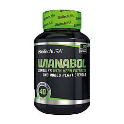 Бустер тестостерона BioTech Wianabol (90 капс) биотеч вианабол