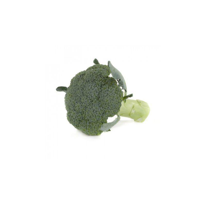 Семена капусты брокколи Орантес F1, Rijk Zwaan 1 000 семян (калибр)