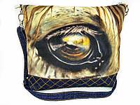 Глаз лошади, фото 1