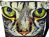 Камышовая кошка, фото 2