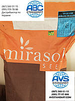 Семена подсолнечника Сирокко Мирасол Сид, урожайность 50 ц/га, олия 50%, заразиха A-G+, засуха жара 9 баллов.