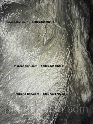 "Сетеполотно капроновое ""Авалон"" яч. 60 \29*1*3\75*150 Avallon сетепластина, фото 2"