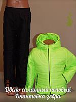 Демисезонный костюм куртка и штаны для деток № 5075