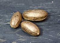 Плоди золотисті 1 шт