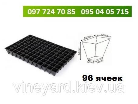 Кассеты для рассады 96 ячеек (8х12 шт) Размер 40х60 см Плотные 650 мкм Высота 6 см СТАНДАРТ
