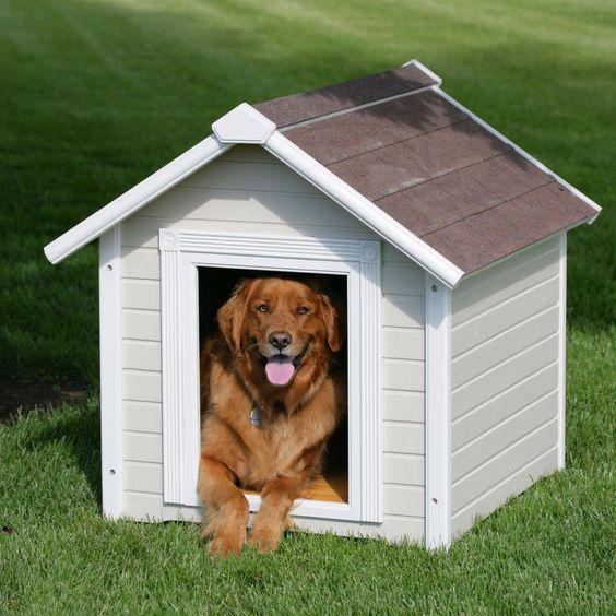 Утепленная будка для крупных собак