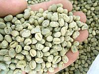 Кофе зеленый в зернах Танзания Пиберри  PB Utengule Estate (ОРИГИНАЛ), арабика Gardman (Гардман) , фото 1