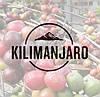 Свежеобжаренный кофе в зернах Танзания АА Килиманджаро (ОРИГИНАЛ), арабика Gardman (Гардман)