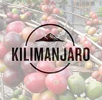 Свежеобжаренный кофе в зернах Танзания АА Килиманджаро (ОРИГИНАЛ), арабика Gardman (Гардман), фото 1