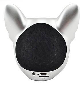 Беспроводная портативная Bluetooth колонка CoolDog S3 Silver, фото 2