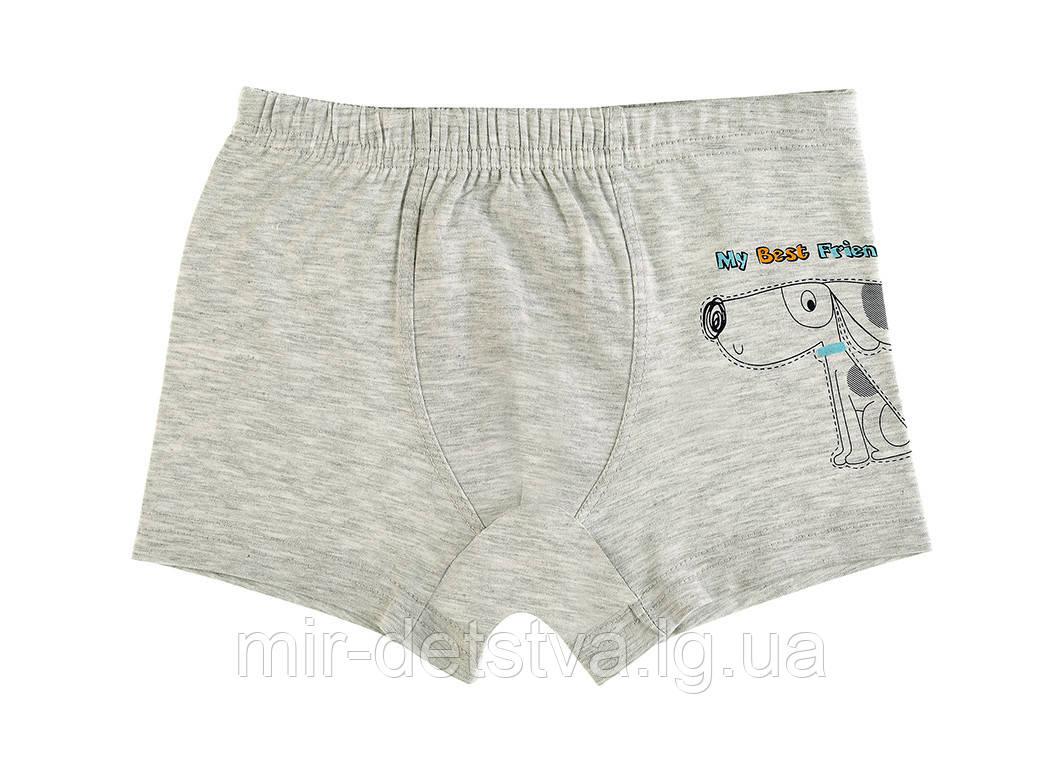Детское белье для мальчиков. Турция. Боксерки для мальчиков оптом р.2/3 года (98-104 см)