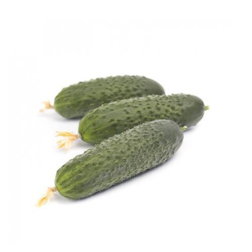 Семена огурца Ромара F1, 250 семян, Rijk Zwaan