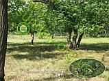 Сетка Антиблик маскировочная, камуфляжная 1.5*7м, фото 5