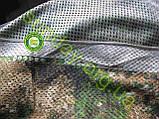 Сетка Антиблик маскировочная, камуфляжная 1.5*7м, фото 7
