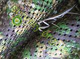 Сетка Антиблик маскировочная, камуфляжная 1.5*7м, фото 10