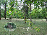 MULTICAM Сетка для маскировки, камуфляжная, 1.5*9м, фото 2