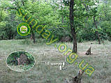 MULTICAM Сетка для маскировки, камуфляжная, 1.5*9м, фото 3