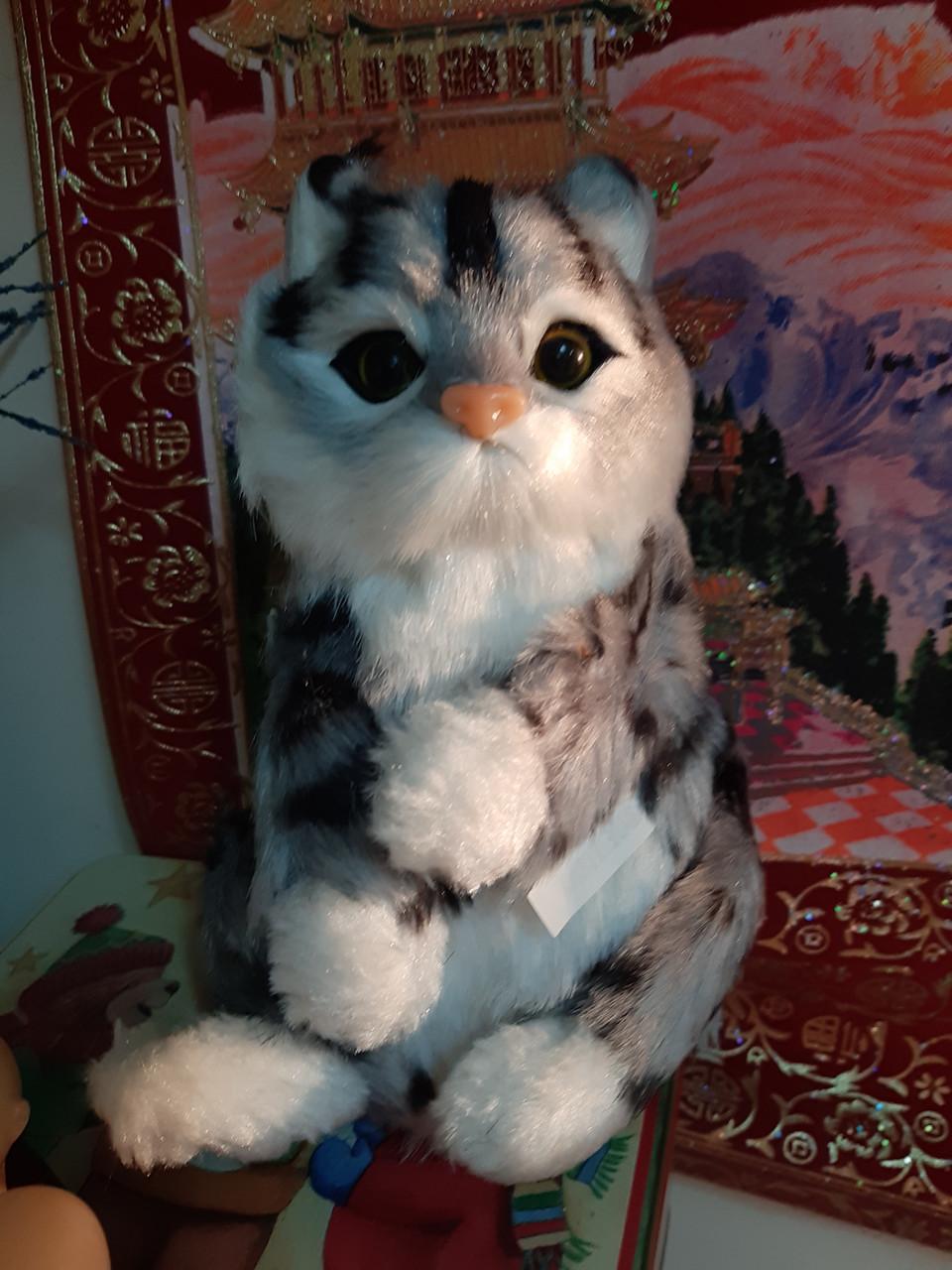 Игрушка Кот повторюшка. (кошка повторяет звуки, 3 расцветки)