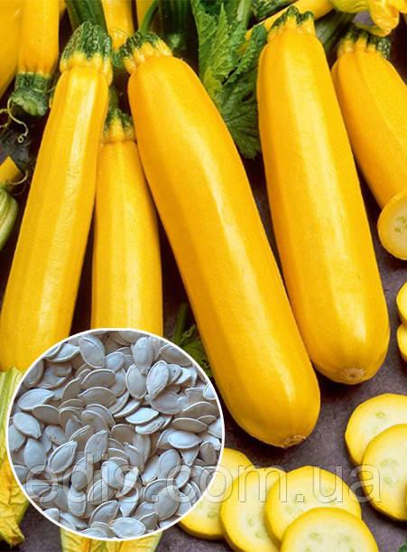Кабачок Золотинка 100 г, вагове насіння Яскрава