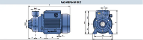 Насос вихревой Pedrollo PKm 100 (однофазный), фото 2