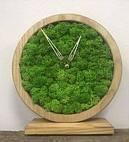 Часы из дерева и мха, фото 1
