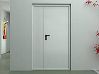 Двери DoorHan противопожарные двухстворчатые глухие DPG60/1350/2050/7035/R/N