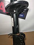 Амортизатор задний Mazda 626 1981-1997, MX6 Coupe 1992-2000 Мазда Купе, фото 3