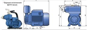 Насос вихревой самовсасывающий Pedrollo модель PKSm 70 (однофазный), фото 2