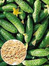 Огурец Конкурент 5 г, семена Яскрава