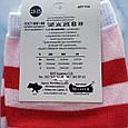 Носки женские котики красная полоска размер 36-41, фото 4